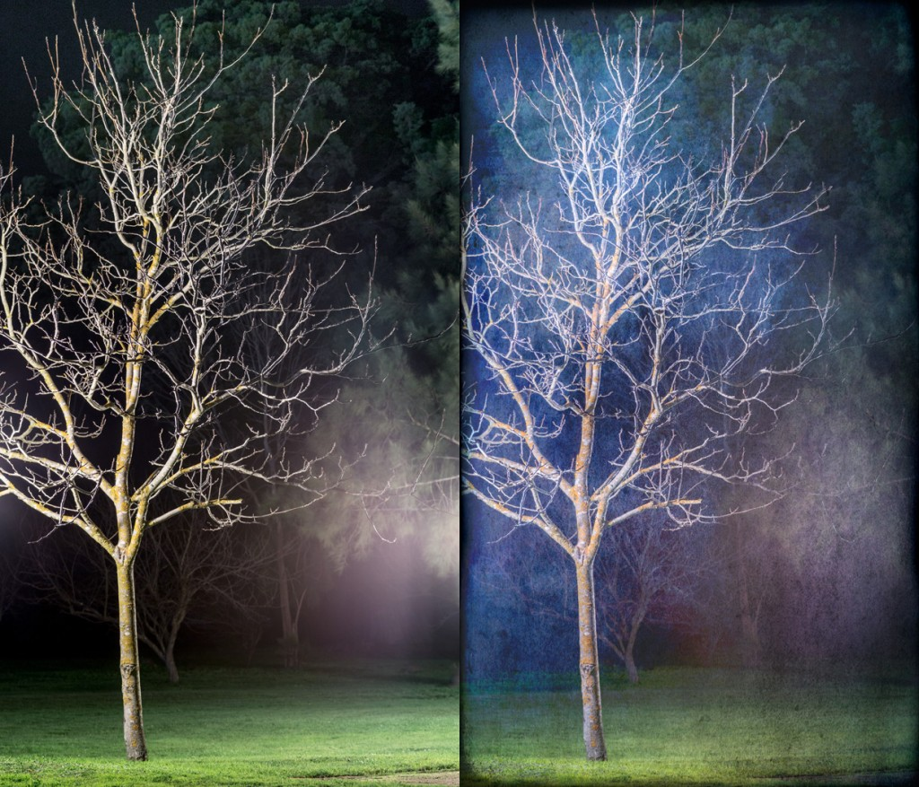 Winter (Before and after). © Russell Brown, All Rights Reserved.
