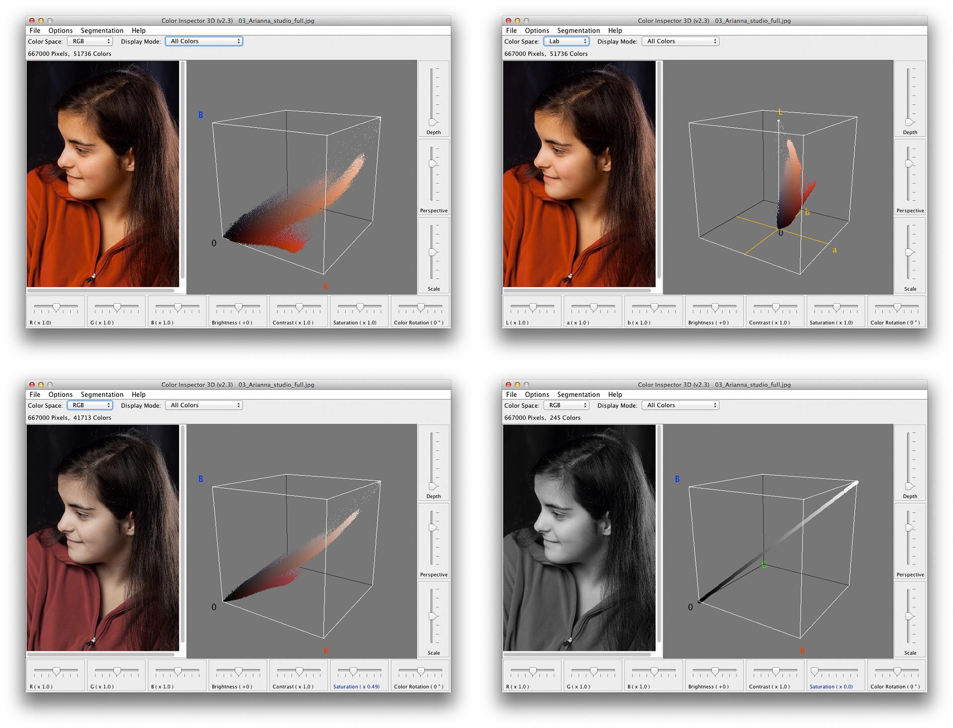 Gamut d'immagine a confronto. In alto a sinistra: immagine originale, RGB. In alto a destra: immagine originale, Lab. In basso a sinistra: immagine parzialmente desaturata, RGB. In basso a destra: immagine completamente desaturata, RGB.