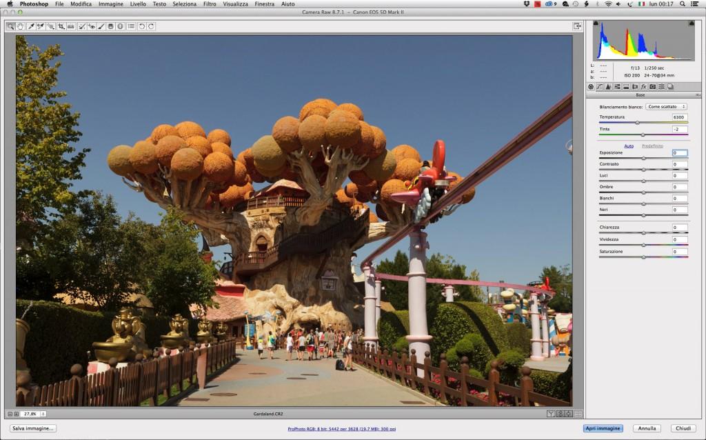 L'anteprima in Camera Raw di un'immagine con una discreta estensione cromatica.